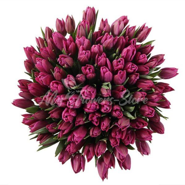 101 фиолетовых тюльпанов в коробке