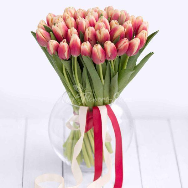 51 Красно кремовая тюльпан
