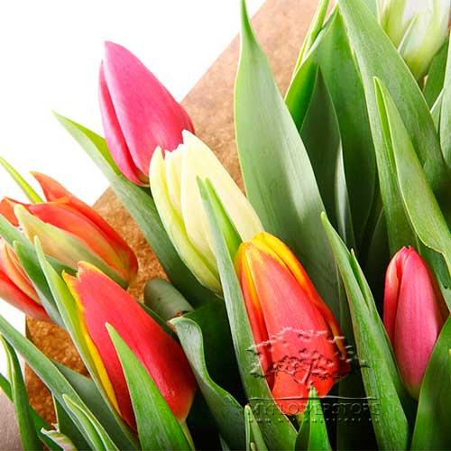 Букет из ярких тюльпанов микс Августа