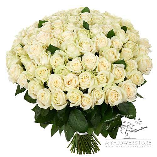 101 белая роза Королева