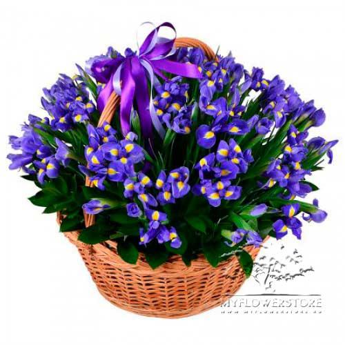Цветочная корзина 101 синий ирис Океан