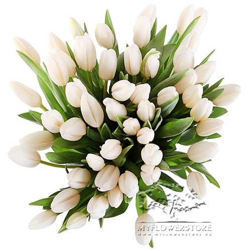 Букет из белых тюльпанов Томила