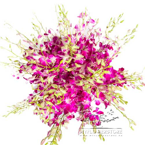 Букет из ярких розовых орхидей Изольда
