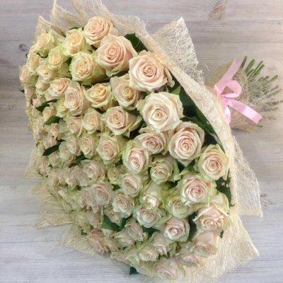 Букет из 101 кремовой розы ( 70см)