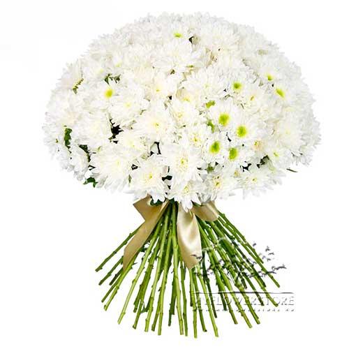 Букет из белых хризантем Мурманск