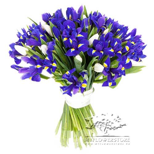 Букет из белых тюльпанов и синих ирисов Пафос