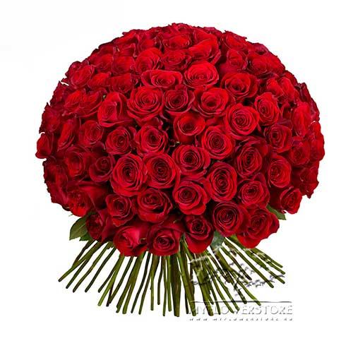 101 красная роза Момбаса