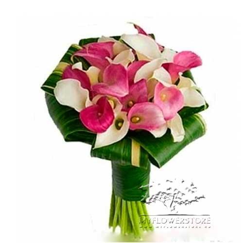 Букет из белых и розовых калл Вифлеем