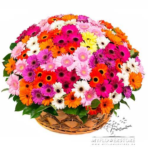 Цветочная композиция из ярких гербер Алжир