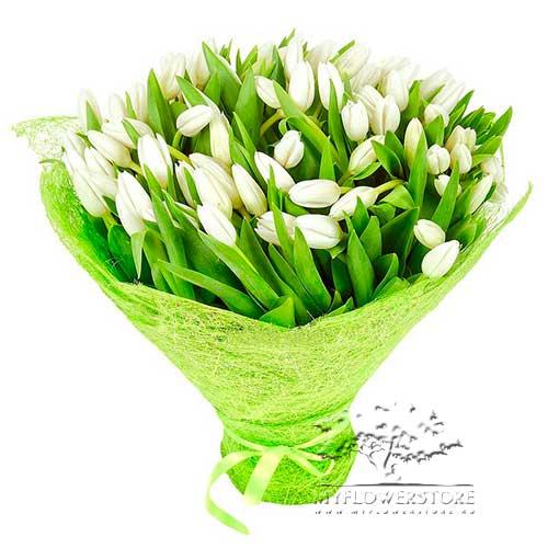 Букет из белых нежных тюльпанов Гауда