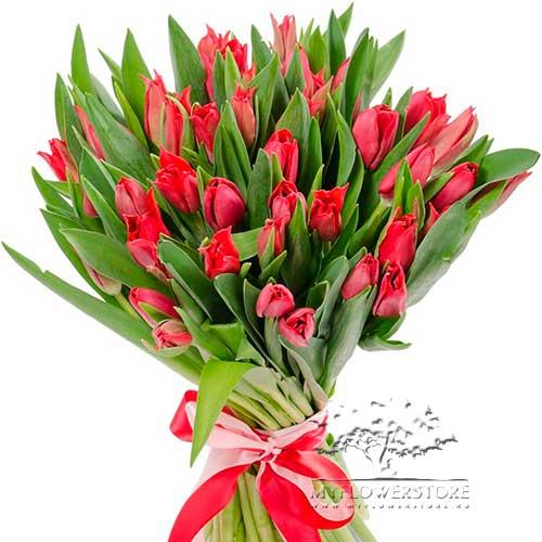 Букет из красных тюльпанов Дивер