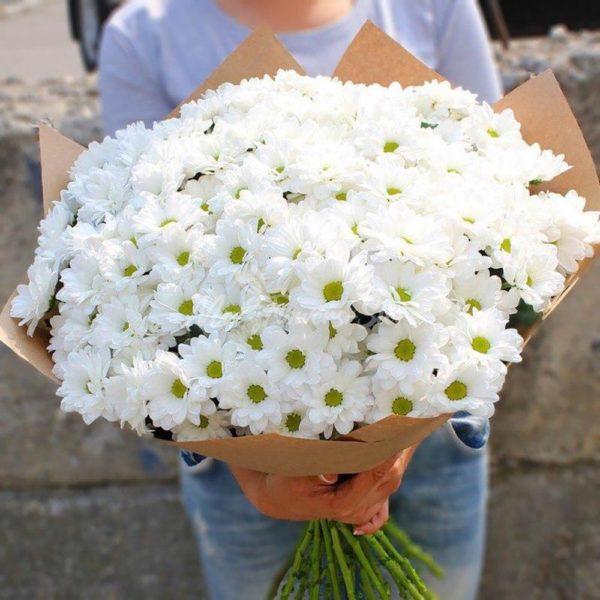 Букет из белых ромашковых хризантем