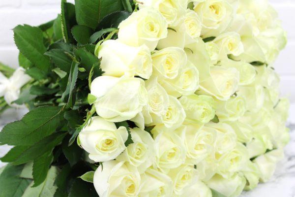51 белой розы