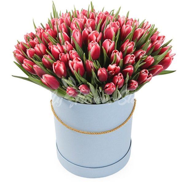101 красно-белых тюльпанов в коробке