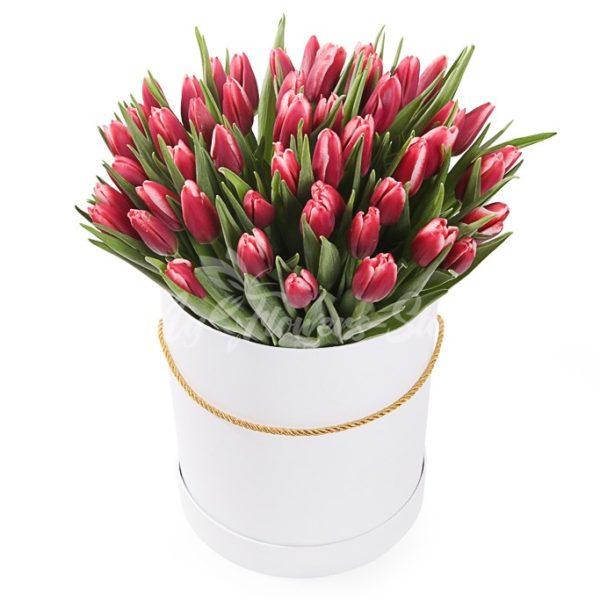 51 красных тюльпанов в коробке