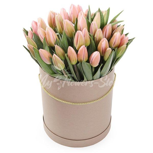 51 розовых тюльпанов в коробке