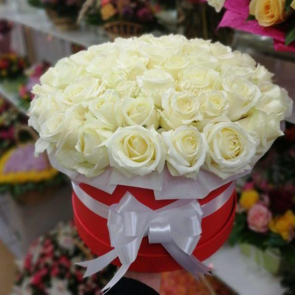 Букет из 51 белых роз в красном коробке