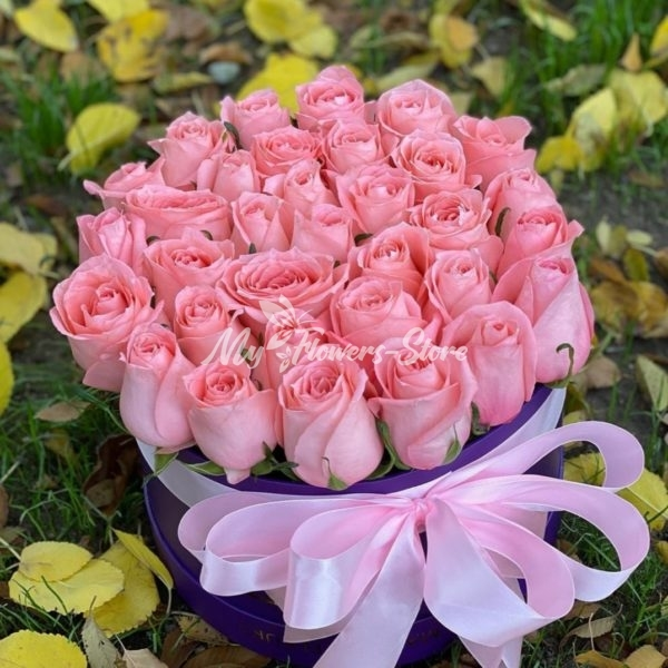 31 кенийская роза в коробке