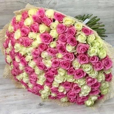 Купить 201 розу недорого в Москве