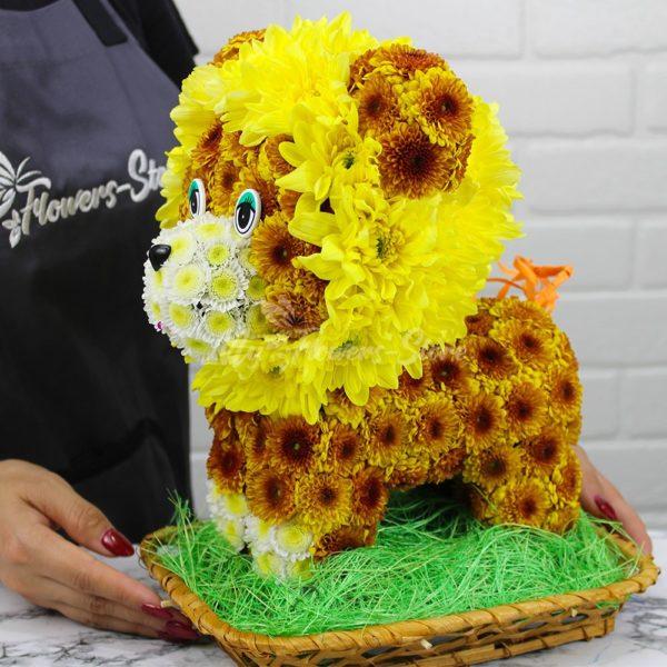 Львёнок из живых цветов