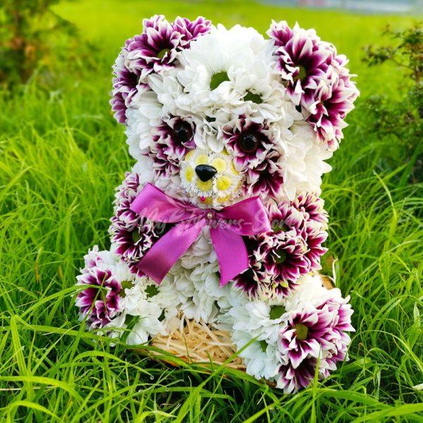 Панда из живых цветов