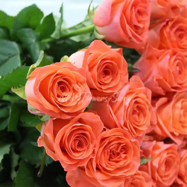 Букет из 29 коралловых роз